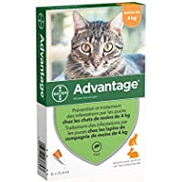 Bayer Advantage 40 Chat/Lapin 0-4 kg 6 pipettes antiparasitaires