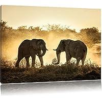 Gli elefanti combattono, Formato: 60x40 su tela, XXL enormi immagini