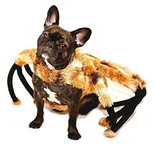 Nicky Große Novelties Spider Tarantel Hund Kostüm Mutant -