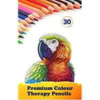 Star Online 30 Professional Colour Therapy Colouring Pencil Crayons