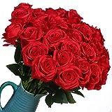 Veryhome Fiori Artificiali Rose di Seta Falso Bouquet da Sposa da Sposa per la casa Giardino Partito Decorazioni Floreali 10 Pezzi (Rosso, specie1)