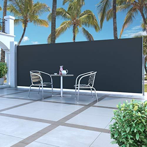 UnfadeMemory Toldo Lateral Retráctil con Gran Pantalla para Jardín Patio Balcón,Protección de la Intimidad,Protección Solar,Color Opcional,Dimensiones Opcional (160x500cm, Negro)