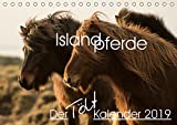 Islandpferde - Der Tölt Kalender (Tischkalender 2019 DIN A5 quer): Dieser Kalender ist speziell für Islandpferdeliebhaber gemacht und zeigt die Pferde ... (Monatskalender, 14 Seiten ) (CALVENDO Tiere)