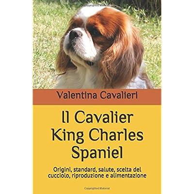 Il Cavalier King Charles Spaniel: Origini, Standard, Salute, Scelta Del Cucciolo, Riproduzione E Alimentazione