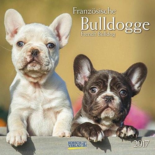 Französische Bulldogge 2017: Broschürenkalender mit Ferienterminen