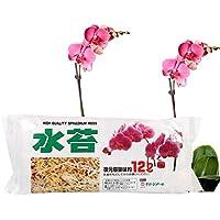 Sphagnum Moss, Acgedor Nutrición Hidratante Fertilizante Orgánico para Orquídea Falaenopsis Orquídea, suministros de jardinería, 12 L