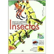 Enciclopedia de los insectos (Grandes Obras)