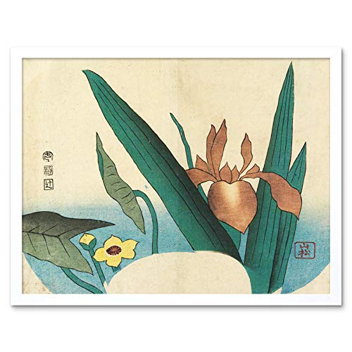Iris and Arrowhead 1834 Yamamatsu Art Print Framed Poster Wall Decor 12x16 inch Wand Deko