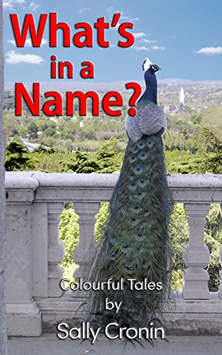 What's in a Name? by [Cronin, Sally]