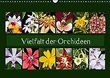 Vielfalt der Orchideen (Wandkalender 2018 DIN A3 quer): Mit wunderschönen Orchideenbilder durch das ganze Jahr. (Monatskalender, 14 Seiten ) (CALVENDO Natur) [Kalender] [Apr 07, 2017] Schulz, Eerika