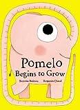 Pomelo Begins to Grow (Pomelo the Garden Elephant)