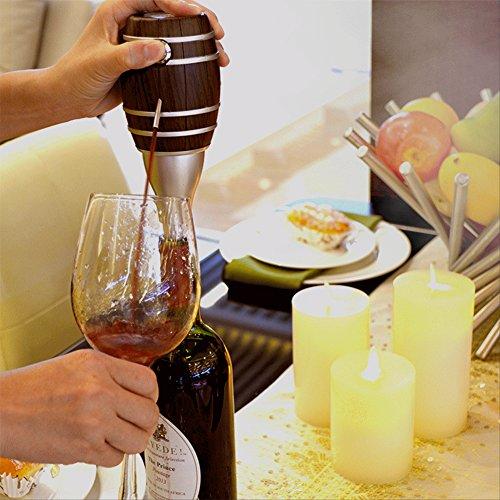 Evertop elektische Wein Dekanter Decanter aus Lebesmittelechte Edelstahl schnell Weinausgießer