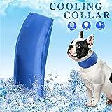 Liqiqi Hunde Kühlhalsband Kühlendes Schal Sommer Drop Wärme Hundehalsband Einstellbare Kette Cooling Collar Hundelätzchen Bequemes Band für Haustier Hund Katze