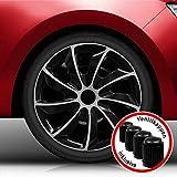 Eight Tec Handelsagentur (Farbe und Größe wählbar!) 15 Zoll Radkappen Quad (Schwarz-Silber) passend für Fast alle Fahrzeugtypen (universell)