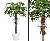 kunstpflanzen-discount.com Künstliche Palme Areca mit 170cm im Keramiktopf - Kunstpalme