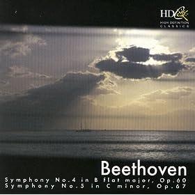 Symphony No. 5 In C minor, Op. 67: I Allegro con brio