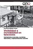 Visibilidad e invisibilidad en televisión: Formaciones culturales, narrativas televisivas y representaciones sociales
