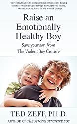 Raise an Emotionally Healthy Boy: Save Your Son From the Violent Boy Culture by Ted Zeff (2013-01-28)