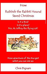 How Rubbish the Rabbit Hound Saved Christmas: More adventures of the strangest rabbit you ever have seen