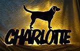 Schlummerlicht24 Led Labrador Hund Deko-Leuchte Nachtlicht Lampe mit Name-n - ausgefallene Zubehör Geschenk-e für alle Hunde-Liebhaber Dog Welpe-n in Schwarz