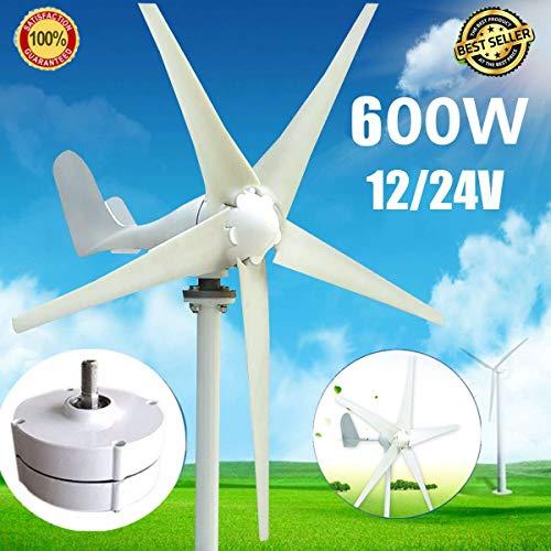 Generatore Eolico a turbina eolica, DC 12V / 24V Max 600W Generatore Eolico a turbina eolica 5 Pale Generatore Eolico Domestico 12V / 24V 600W Generatore a magneti permanenti Tu rbine,24v