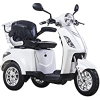 MOVILIDAD ELÉCTRICA DEL TRICICLO / SCOOTER RECREATIVO HASTA 25km / h 48V 80AH 500W (Blanco