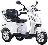 Elektro Mobil, E-Mobil, veicolo persone anziane, E-triciclo, 25 km/h, bianco