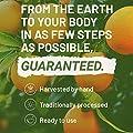 Vitamin C 1000 mg Tabletten von Nutritrust® - Ascorbinsäure aus reinen Zitrusfrüchten & Grün Gemüse hohe Festigkeit &Formel mit hoher Potenz - trägt zu einem normalen Immunsystem bei GMP-zertifiziert. von Nutritrust bei Du und dein Garten