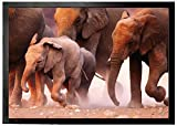 1art1 94649 Elefanten - Elefantenherde, Namibia Fußmatte Türmatte 70 x 50 cm