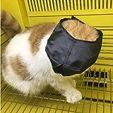 Zantec Kreative Katze, verstellbar, Schwarz, Blindfold Maulkorb Haustierbedarf