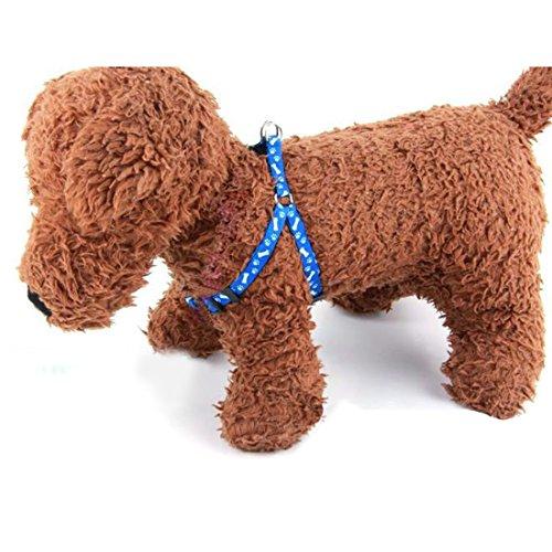 Welpen Blei Haustier kleiner Hund Nylon Drucken Halsband Gurt Leine Set Neck Einstellbare Farbe zuf?llig - 3