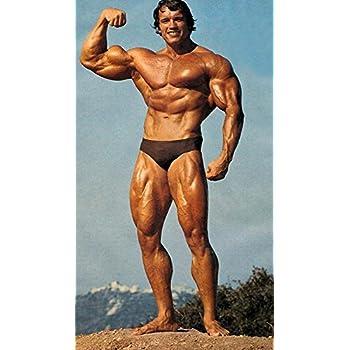 Arnold schwarzenegger bodybuilding poster hd wallpaper background arnold schwarzenegger bodybuilding poster hd wallpaper background fine art paper voltagebd Images
