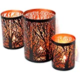 [Sponsored]Nexplora Industries Decorative Tealight Candle Holder Set Of 3 (Black & Copper)