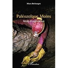 Paléozoïque Moins