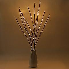 Idea Regalo - Luci Decorative Creative, 2PCS Lampadine della Decorazione IP44 77CM 20 LED Luci della Decorazione per il Vaso, il Tavolo, il Salotto, la Camera da Letto, l'Hotel, il Ristorante
