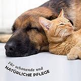 AniForte 30 ml Sanfte Augenpflege mit Augentrost Augentropfen u.a. bei trockenen Augen – Naturprodukt für Haustiere - 4