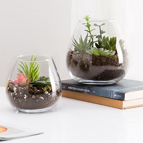 Set aus 2dekorativen Glas-Displays, moderne, runde, klare Vasen/Schalen Kerzenleuchter/Terrarien -
