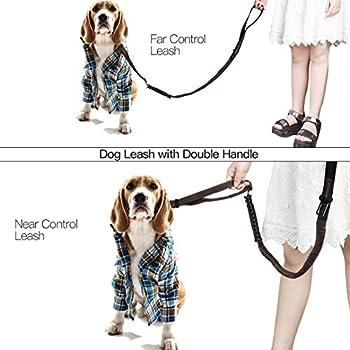 Ckeyin Reflektierende Haustier-leine, Hohe Elastische Hundeleine Haustier-autositz-sicherheitsgurt-einziehbare Tracti Auf Sicherheitsseil 1