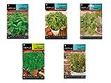 Semillas aromáticas lote 5 sobres (Hierbabuena, Albahaca, Cilantro, Perejil y Tomillo)