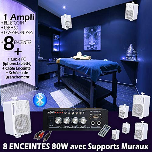 PACK SONO MAGASIN INSTITUE RESTAURANT BAR PUB CLUB SALON DE COIFFURE 8 ENCEINTES 80W + 1 AMPLI BLUETOOTH PA DJ MIX MAISON