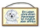EIN LEBEN OHNE EINEN HAVANESER - HOLZSCHILD MDF 25x12,5 cm 26 HUNDESCHILD