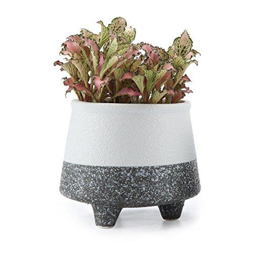 t4u-stile-coreano-neve-seriale-no4-ceramica-vaso-di-fiori-pianta-succulente-cactus-vaso-di-fiori-con