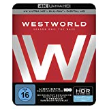 Westworld Staffel 1: Das Labyrinth (4K Ultra HD + 2D-Blu-ray) (6-Disc Version)