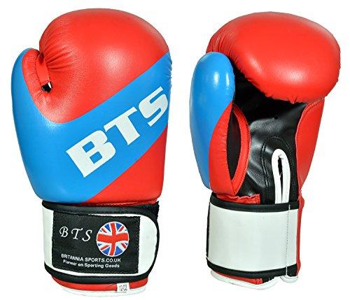 Rex Leder Boxhandschuhe, MMA, Sparring, Boxsack, Muay Thai Training Handschuhe bg128