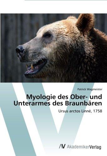 Myologie des Ober- und Unterarmes des Braunbären por Wagmeister Patrick