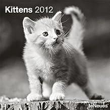 Kittens 2012 Calendar