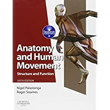 Anatomy and Human Movement: Structure and Function: Structure and Function (Physiotherapy Essentials)