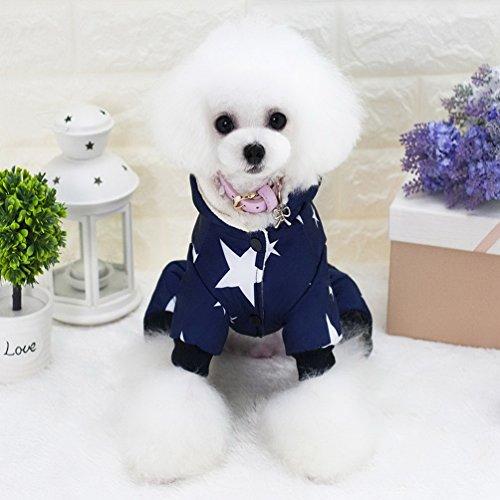 smalllee _ Lucky _ store Star Muster Haustier Kleidung für Hunde Hund Sweatshirt Kalten Wetter Fell Pet Jumpsuit mit Kapuze Katze Outfits Chihuahua Kleidung Warm Hoodie (Streifen Pj Top)
