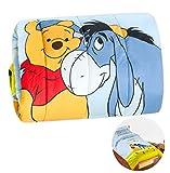 emmevi Trapunta Piumone Winnie The Pooh Letto Letto Singolo 1 Piazza Invernale Bimbo Bimba Disney Originale MOD.Trapunta Winnie Pooh Azzurro