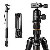 Tycka Aluminium Reise Kameras Stativ, 1410mm Höhe und Tragfähigkeit von 12kg, mit 360 ° Panorama Ball Kopf, verfügt über eine neue Links-Flip-Verriegelung, für Canon, Nikon, Sony Kameras und mehr